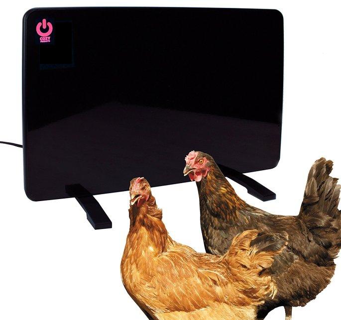 safe chicken coop heater